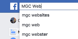 The Facebook Search Box