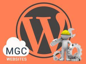WordPress Management Service