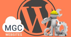 Wordpress Management Service